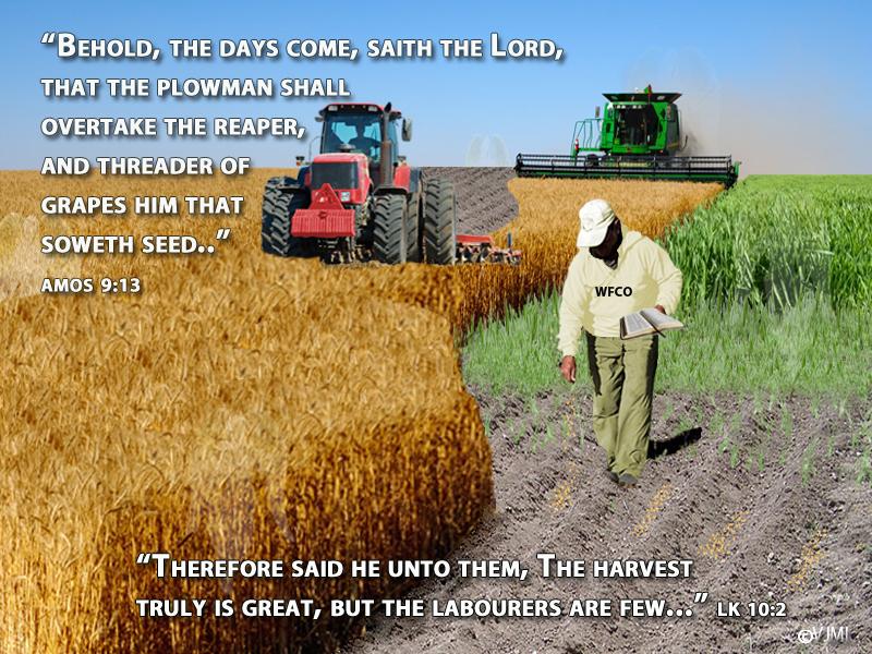 New-Harvest1